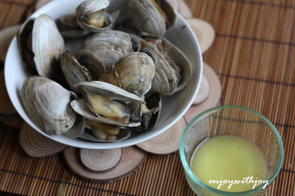 New England Steamers | enJOY with JOY